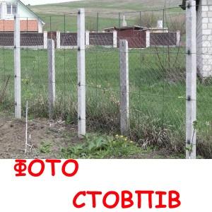 stolbphoto